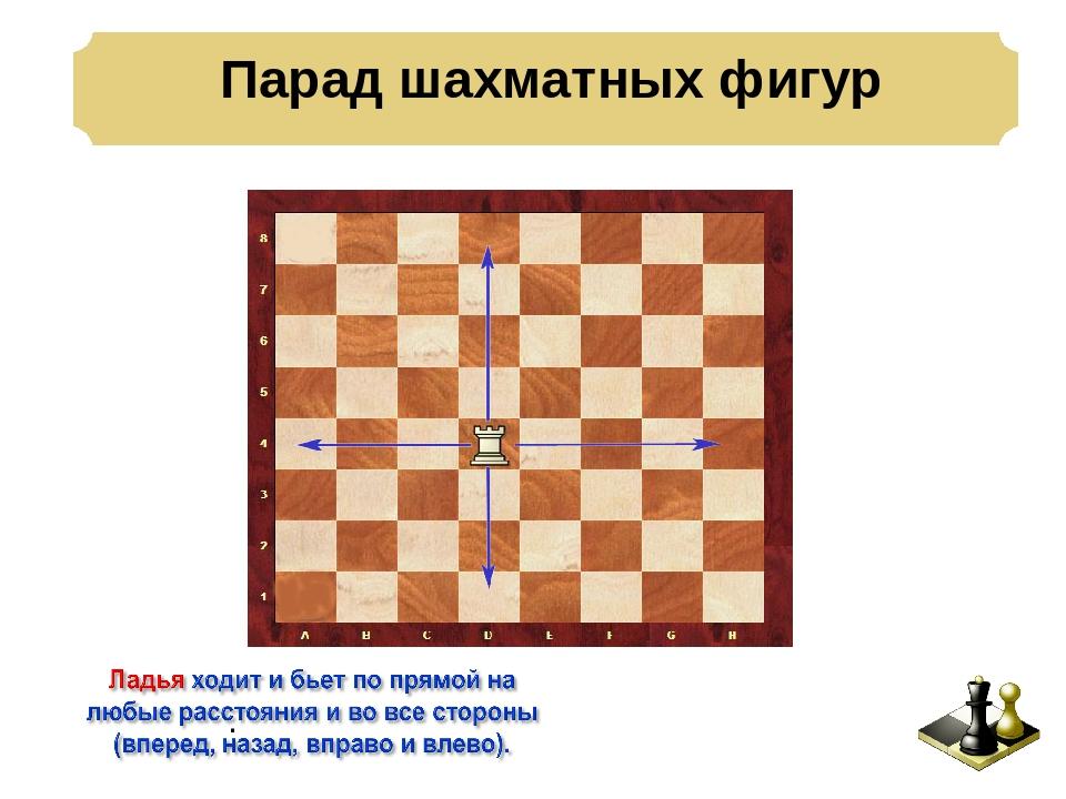 презентация шахматы для детей