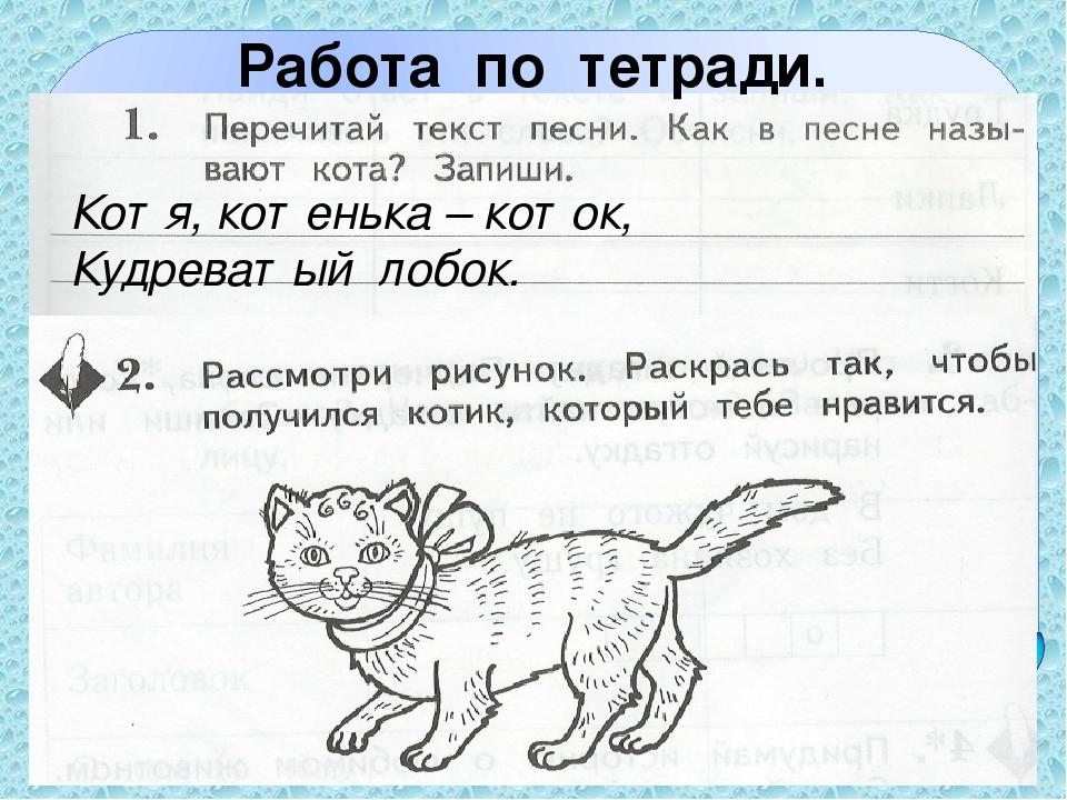 Работа по тетради. Котя, котенька – коток, Кудреватый лобок.
