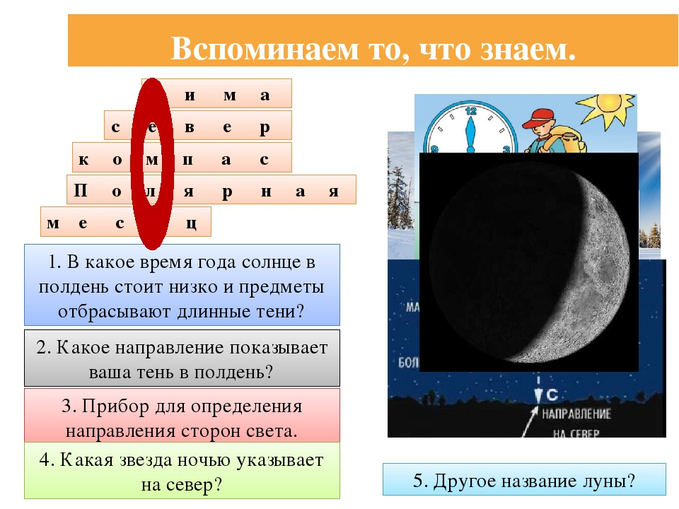 Вспоминаем то, что знаем. 1. В какое время года солнце в полдень стоит низко...