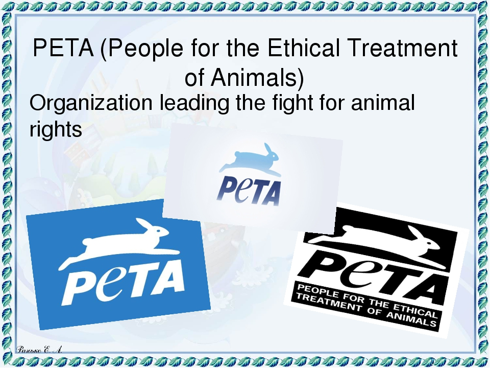 the unethical treatment of animals To understand the concept of ethical treatment of animals, we have to get an idea on ethical behavior as such ethical behavior assumes the care of another person, empathy with another person, action on behalf of that person.